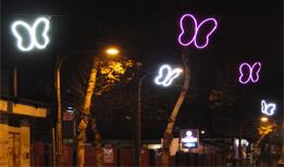 نورپردازی با طرح پروانه در خیابان فلسطین