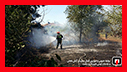 هشدار رییس سازمان آتش نشانی رشت در پی آتش سوزی های پی در پی در رشت