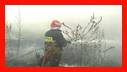 هشدار سازمان آتش نشانی نسبت به ایمنی در برابر وزش باد شدید یاخیلی شدید /آتش نشانی رشت